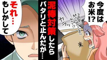 【エトラちゃん】【漫画】連続で空き巣被害に遭い○○を設置→「それヤバイぞ」対策後被害が全く無くなり、取り外しを検討してしまった結果…