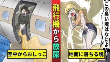 【ミステリー調査団】飛行機からオシッコが落下し屋根が破損…直撃したら死亡する恐怖の事件を漫画にした